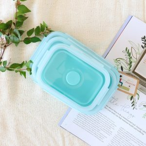 Collapsible Food Lunch Box
