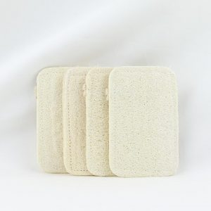 Dishwashing Loofah 4 Pack